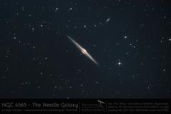 NGC4565 - Nadelgalaxie