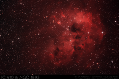 IC410 Kaulquappennebel